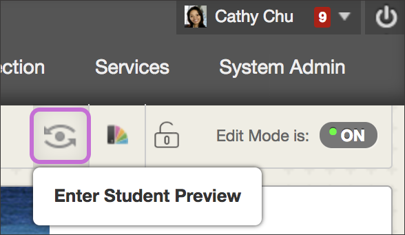 Detail screenshot showing the icon to click for entering student preview.