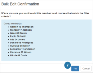 image of Blue DIG bulk edit confirmation window with Yes button highlighted
